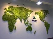 江苏苔藓墙